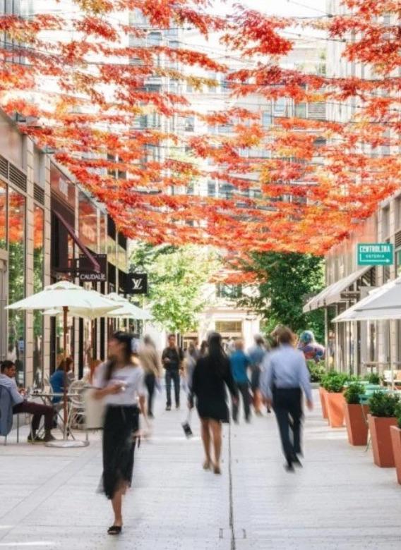 Fall at CityCenterDC